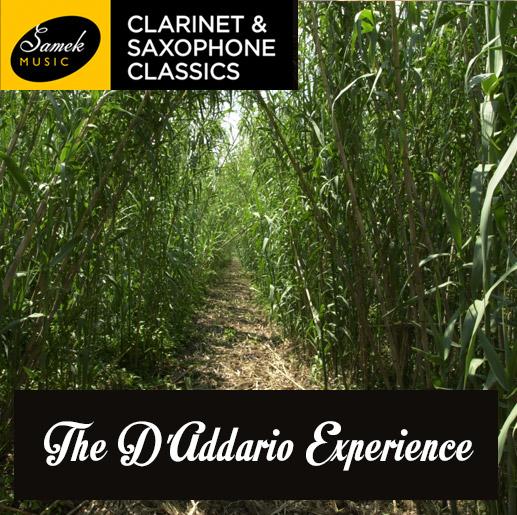 The-DAddario-Experience
