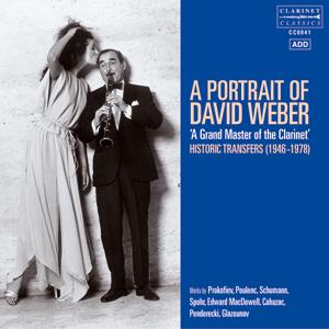 A Portrait of David Webber